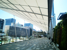 東京駅視察会写真3